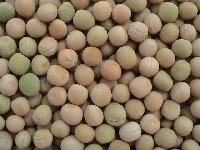 Frozen White Peas