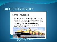 Cargo Insurance Management Services