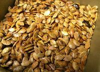 Cinnamon Seed