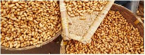Groundnut Extraction Meal