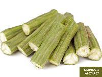Fresh Moringa Leaf 02