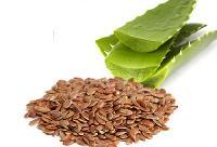 Aloe Vera Seeds