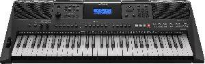 Musical Electronic Keyboard