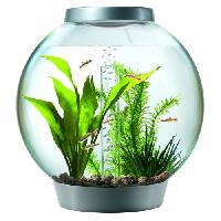 Aquarium Fish Bowl