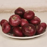 Red-onion03