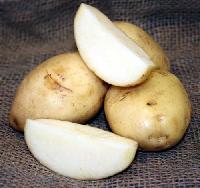 Chipsona Potato