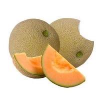 Fresh Musk Melons
