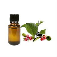 Ooty Wintergreen Oil