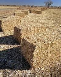 Corn Stover Shredder