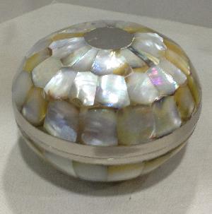 Box Sea Shell 1