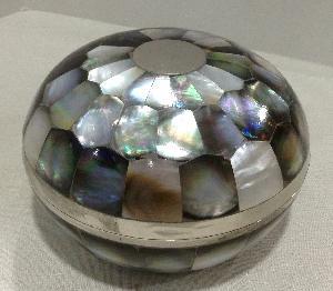 Box Sea Shell 2