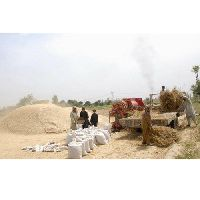 Agricultural Waste Products