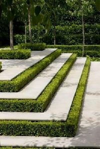 Landscape Garden Maintenance And Development