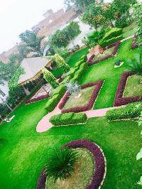 Terrace House Garden Service