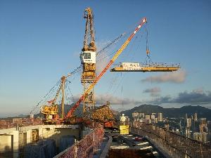 Tower Cranes Erection, Dismantling, Amc, Services