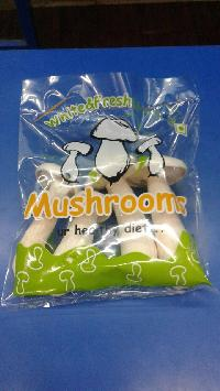 Milk Mushrooms