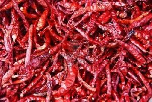 S-10 Dried Red Chilli