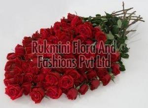 Fresh Red Cut Rose Flowers