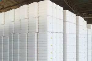 Fully Pressed Cotton Bales