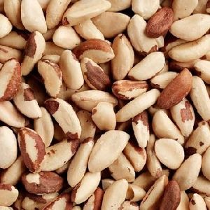 Brazil Nuts Kernels Naturally healthy nut for sale