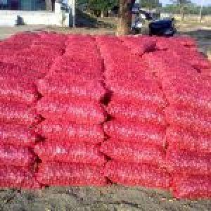 Fresh bright red Onion