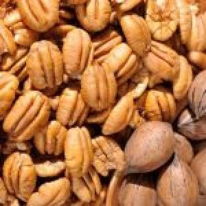 Hard shell Pecan Nuts