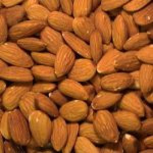 popular candy almond nuts for sale