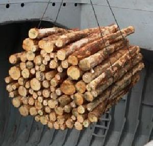 -White timber wood pellets