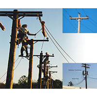 Erection Service in Distribution Line