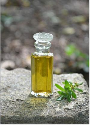 Brahmi Oil