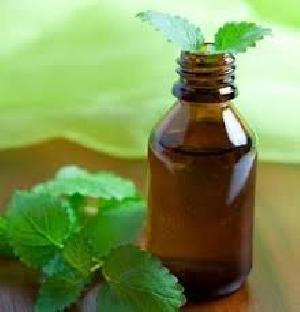 Himalayan Mint Essential Oil