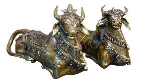 Pair of Cow Sculpture