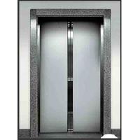 glass auto door elevator