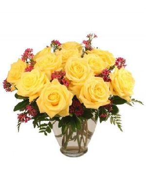 Fresh Gold Strike Rose Flowers