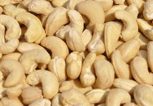 High Quality Vietnam Raw Cashew Nuts W240,W320,W450 Cashew Nut A