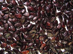 White/Black/Red Watermelon Seeds