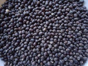Black Matpe