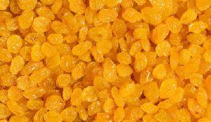 Gold Raisins