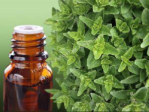 Natural Oregano Essential Oil