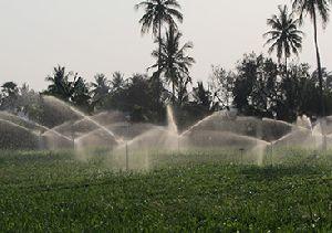 Sprinkler Irrigation System Installation Services