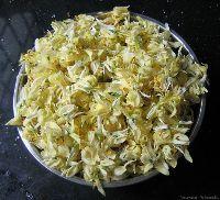 Moringa Oleifera Dry Flower