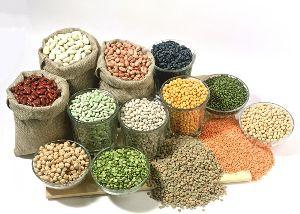 Agro Grains
