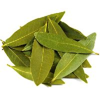 Bay Leaves (tej Patta)