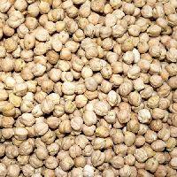 Organic White Chick Peas