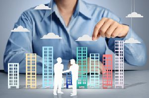 Building And Property Consultant