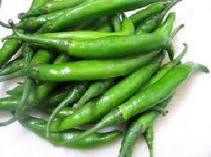 Spicy Green Chilli