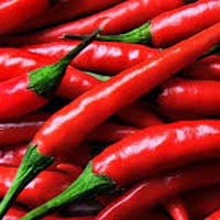 Hot Red Chilli