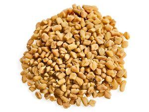 Good colour Big seeds Fenugreek seed