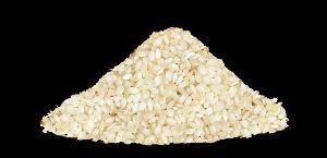 Round Non Basmati Rice