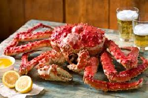 Live and frozen Alaskan King Crab
